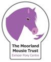 mmt logo (2)